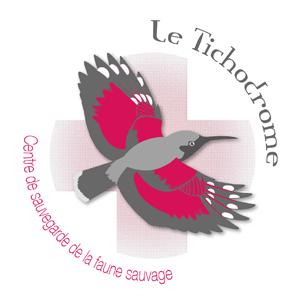 Le Tichodrome recrute un(e) mediateur(trice) faune sauvage !