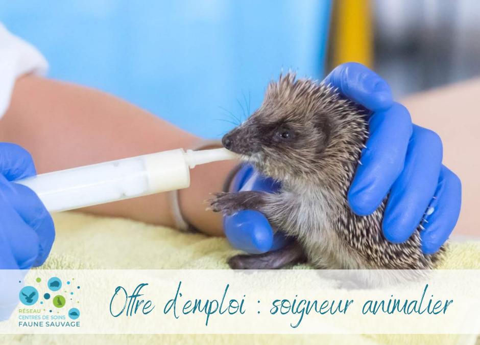 Charente Nature recrute un soigneur animalier